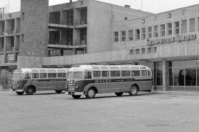 Világos- és sötétkék színekkel, fehér tetővel rendkívül impozáns látványt nyújtottak a Malév egykori Ikarus 30-asai − itt éppen Ferihegyen várakoznak a járművek. Később még dekoratívabb Ikarus 55-ösöket is vásárolt a légiközlekedési vállalat